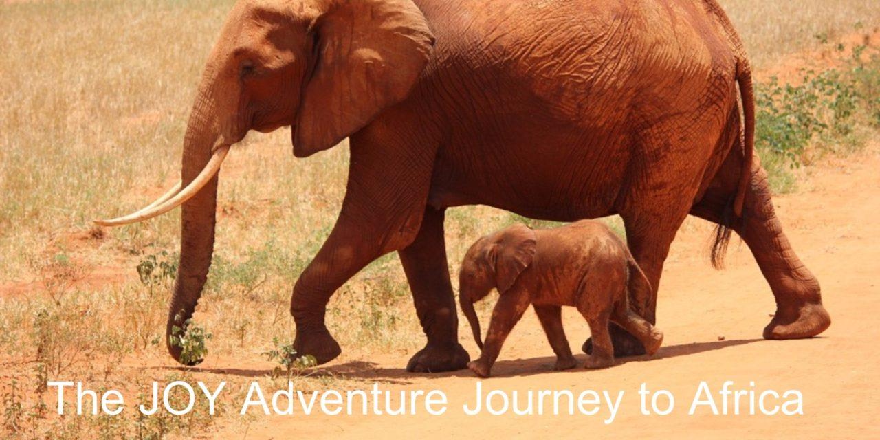 Africa Travel Adventure