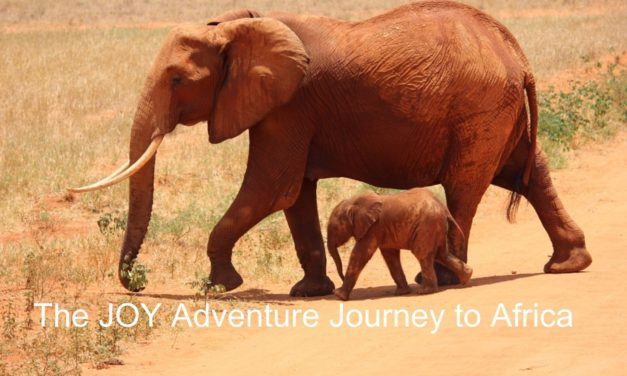 Africa Travel Adventure